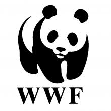 WWF - The Netherlands